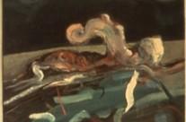 Gopher Hole Medusa #12, 1974