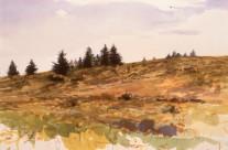 Lane's Meadow, 1985