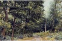 The Turn's Return, 1989