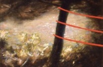 Untitled (Red Poles), 1989