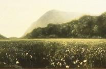 Secret Marsh – Forgotten Dream, 1991-92