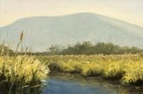 Manitou Marsh, Early Summer Haze, 1992