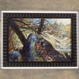 Reservoir Rock, 2002
