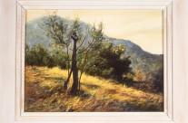 Sophie's Olives, 2002