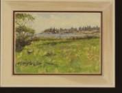 Maine Landscape, Summer, 2011